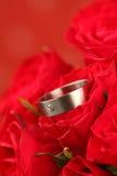 Titanium engagement ring on rose Stock Photos