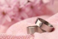 Titanium wedding rings Royalty Free Stock Photo