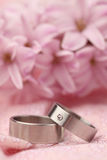 Titanium wedding rings Royalty Free Stock Image