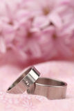 Titanium wedding rings Stock Photos