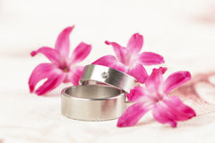 Titanium wedding rings Stock Image