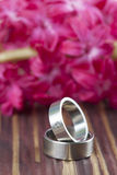 Titanium wedding rings Stock Photo