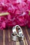 Titanium wedding rings Stock Photo