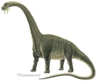 Titanosaur Argentinosaurus Royalty Free Stock Photo
