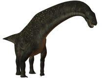 Titanosaurus colberti-3D Dinosaur Stock Photography