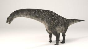 Titanosaurus-dinossauro Imagem de Stock Royalty Free