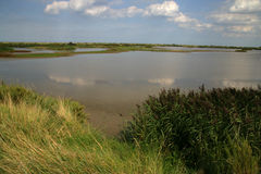 Titchwell RSPB reserve Stock Photography