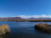 titicaca Arkivfoto