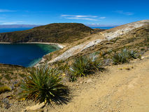 Titicaca lake Royalty Free Stock Photos