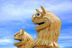 Titicaca Royalty Free Stock Images