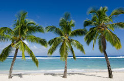 Titikaveka beach in Rarotonga Cook Islands Stock Photography