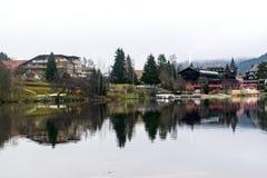 Titisee et lacs Schluchsee en Allemagne photos libres de droits