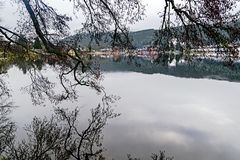 Titisee et lacs Schluchsee en Allemagne image stock