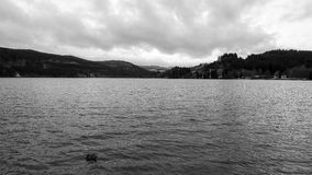 Titisee Lake in Winter Royalty Free Stock Images