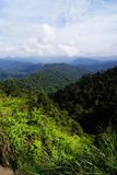 Titiwangsa Mountains Royalty Free Stock Images