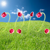 Title 2012. Year from beauteous pink tulips on a background of meadow royalty free stock photo