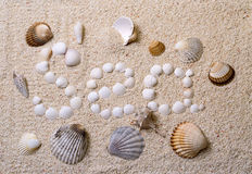 Title Sea from shells Stock Images