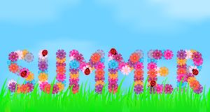 Title of summer flowers. Title of summer flowers on a background of grass and sky Stock Images