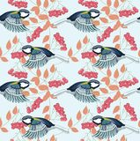 Titmouse. Great tit and cluster of red ashberry royalty free illustration