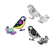 Titmouse bird. Cartoon image. Black and white and color variation. Possibility to paint the according to your idea. Elaborate drawing Royalty Free Stock Photo
