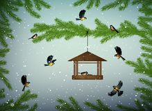 Titmouse birds on the pine tree branch with feeder in the winter season, family of birds in snowy cold whether, royalty free illustration