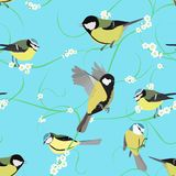 Titmouse pattern with flowers Royalty Free Stock Image
