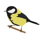 Titmouse. Vector illustration isolated bird Titmouse Stock Image