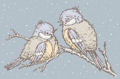 Titmouses在一个冬日 库存照片