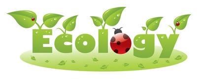 Titolo del testo di ecologia con i fogli di verde e del ladybug Fotografie Stock Libere da Diritti