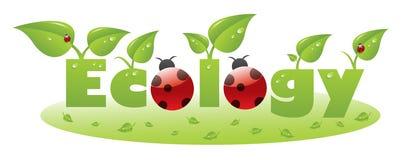 Titolo del testo di ecologia con il ladybug Immagini Stock