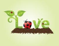 Titolo di amore illustrazione vettoriale