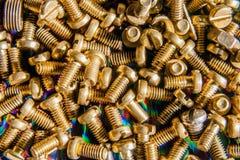 Titolo: Piccoli bulloni bronzei Fotografie Stock Libere da Diritti