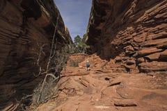 Titre de randonneur dans un canyon de désert Image libre de droits