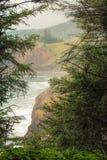 Titt a buar fönstret till och med de prydliga träden för att avslöja den Oregon kustlinjen royaltyfri fotografi