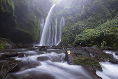 Tiu Kelep siklawa blisko Rinjani, Senaru, Lombok, Indonezja, Azja Południowo-Wschodnia Obrazy Stock