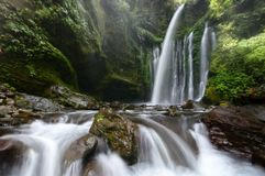 Tiu kelep waterfall, lombok indonesia royalty free stock images
