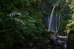 Tiu Kelep Waterfall near Rinjani, Senaru Lombok indonesia. Southeast Asia. Motion blur and soft focus due to Long Exposure Shot. Tiu Kelep Waterfall near stock photography