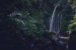 Tiu Kelep Waterfall near Rinjani, Senaru Lombok indonesia. Southeast Asia. Motion blur and soft focus due to Long Exposure Shot. Tiu Kelep Waterfall near stock photo