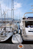 Tivat Porto Montenegro yachter Royaltyfri Foto