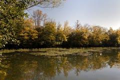 Tivoli公园的湖在卢布尔雅那 免版税库存照片