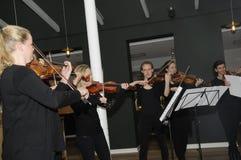 TIVOLI执行为媒介人的庭院音乐家 库存图片