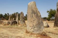 Tiya埃赛俄比亚的世界Eritage站点 免版税库存照片