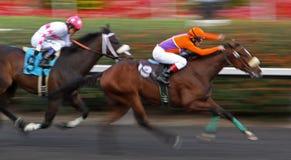 Tiz dynamiska segrar en fordra Race Royaltyfria Foton