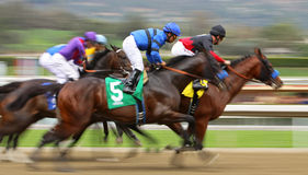 Tiz The Truth Wins His First Race Stock Images