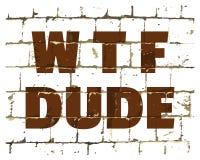 Tizio di WTF stampato sul muro di mattoni stilizzato Iscrizione umoristica strutturata per la vostra progettazione Vettore illustrazione vettoriale
