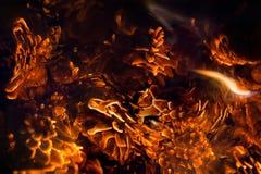 Tizzoni del fondo molle del fuoco romantico delle pigne Fotografie Stock