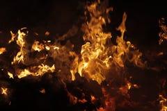 Tizzoni dello spreco di combustione di industria della polpa Fotografie Stock Libere da Diritti