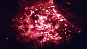 Tizzoni di un fuoco Immagine Stock