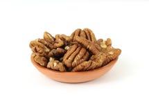 tjäna som för pecannötter som är litet Arkivbild