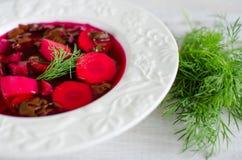 tjänad som soupstil för rödbeta land Royaltyfri Fotografi